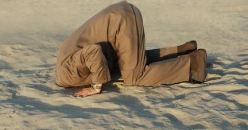Kopf im Sand.jpg
