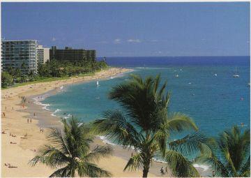 Der Strand von Maui.jpg