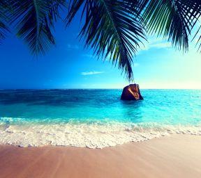 Tropical_Paradise-wallpaper-10198192.jpg
